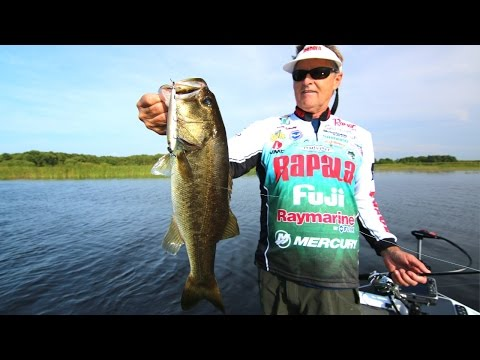 How To Fish Prop Baits For Big Bass Around Grass