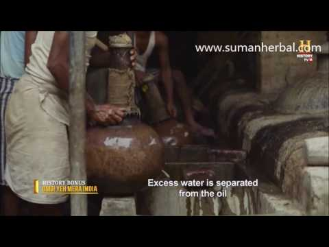 Kannauj perfume manufacturing  A 5000 year old Industry