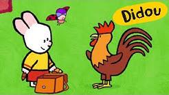 Coq - Didou, dessine-moi un coq | Dessins animés pour les enfants , plus 🎨 ici ⬇⬇⬇