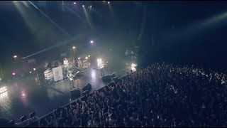 Cover images UNISON SQUARE GARDEN「シュガーソングとビターステップ」LIVE MUSIC VIDEO