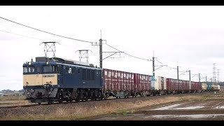 原色に復活したEF64 1028が牽く貨物列車と209系