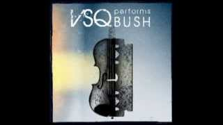 Greedy Fly - VSQ Performs Bush