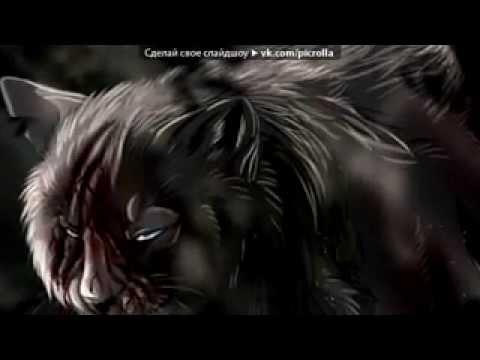 Music video Банда Москвы - Раненый белый волк