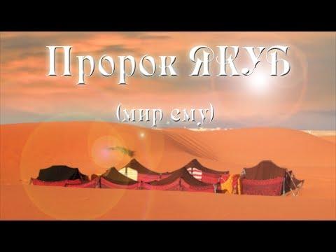 Пророк Якуб | Истории пророков | Шарип Умханов
