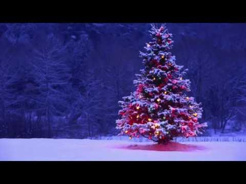 Decorate the Christmas tree - karaoke