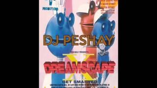 Dj Peshay @ Dreamscape 10 @ The Sanctuary MK 8th April 1994
