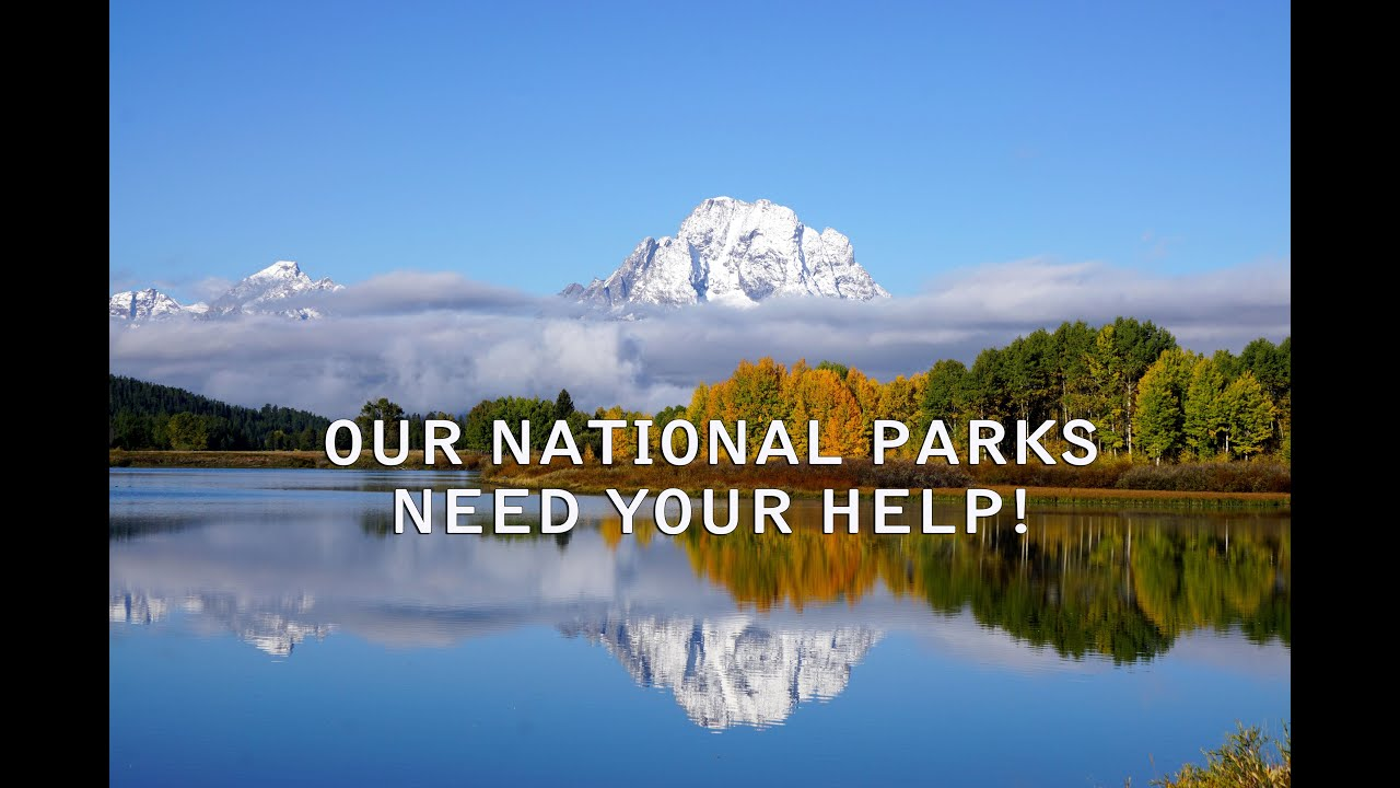 Can anyone suggest me a National Park for my report? Thx?