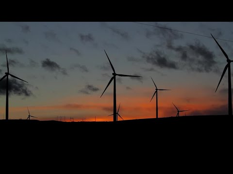 Wind Farm Outline At Sunset Stock Video
