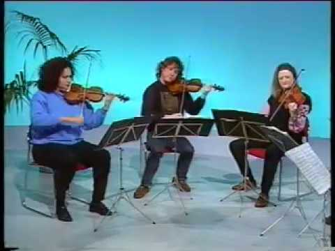 New Zealand String Quartet - Schubert Scherzo in C major - live 1992 TV performance