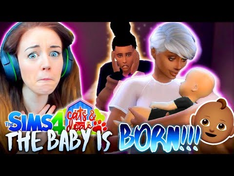 🍼👶🏽GIRL OR BOY!? 👶🏽🍼The Sims 4 CATS & DOGS 18 🏖