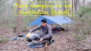Tarp camping in an Australian forest