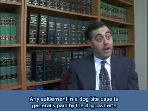 Michigan Dog Settlements |Michigan Dog Bite Lawyers|Subtitle