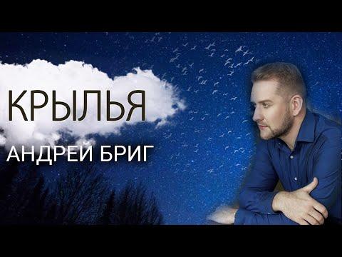Крылья Андрей Бриг 🎤🎼