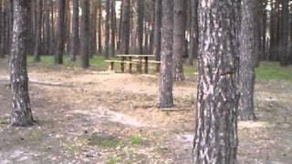 Голубые озера Чернигов. Грибовая рудня 24.04.2011(Голубые озера Чернигов. Грибовая рудня 24.04.2011., 2011-04-25T08:35:38.000Z)