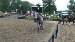 Wrabbit in the Devoucoux Hunter Derby at HITS -- For Sale