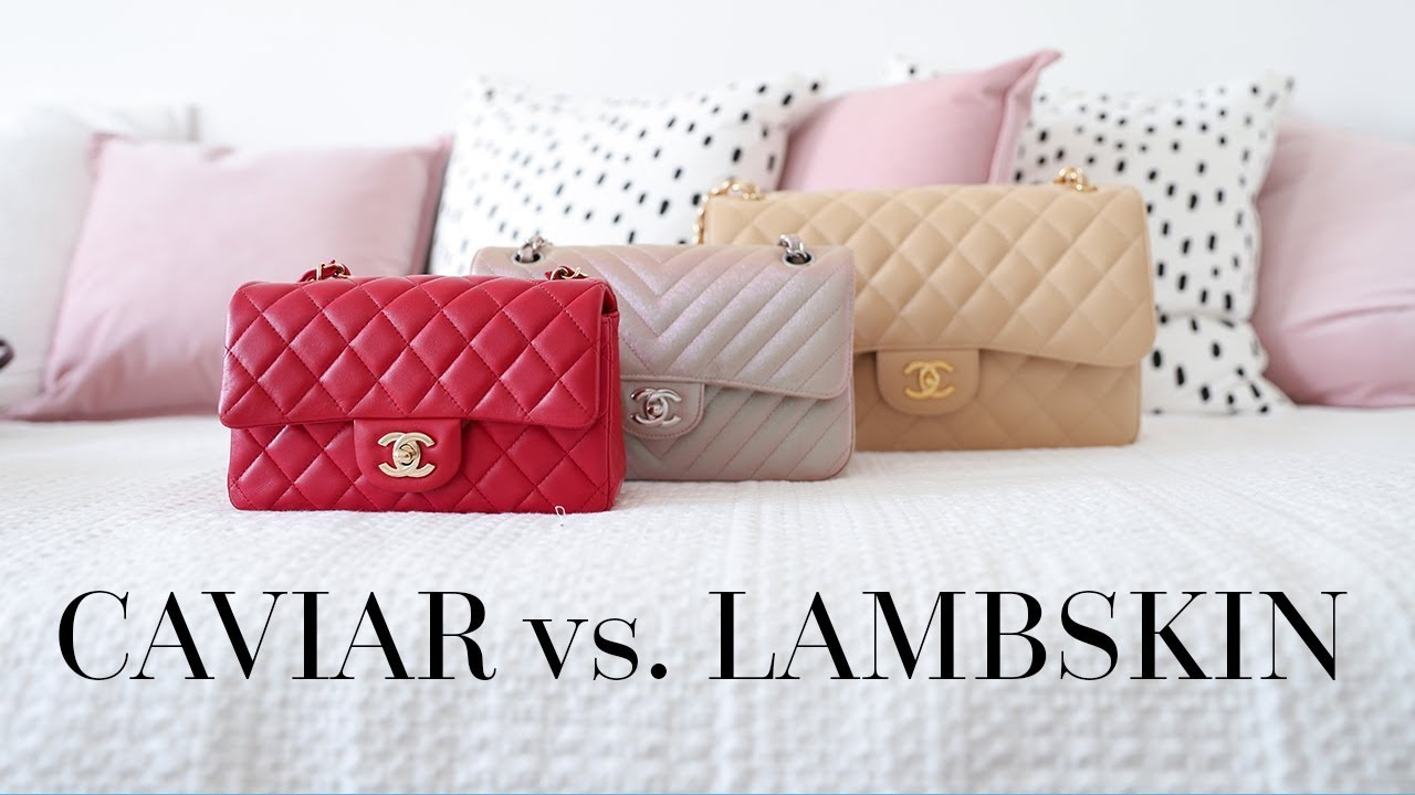 17bb563668a1 CHANEL LAMBSKIN vs CAVIAR LEATHER | BAG FAQS. Chase Amie