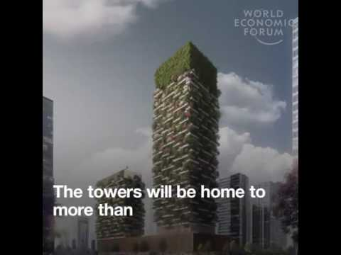 India need to do like this... environment revolution..