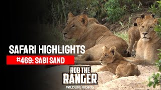 Idube Safari Highlights #469: 08 - 11 April 2017 (Latest Sightings) (4K Video)