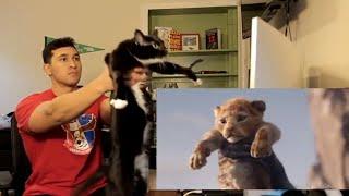 Baixar The Lion King Official Teaser Trailer - REACTION!