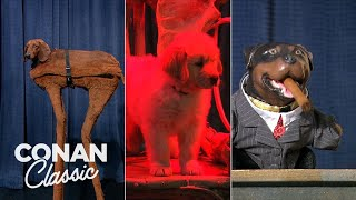 Conan Helps The Obamas Find A Dog -