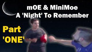 mOE & MiniMoe: A