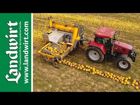 Agro-Stahl Phönix Kürbiserntemaschine | landwirt.com