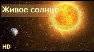 Солнце онлайн. Смотреть солнце в HD