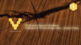 Организация пасеки, правила пчеловодства, инвентарь