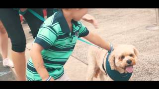 Dream Drives Melbourne | A Very Special Dream Day Charity Even…