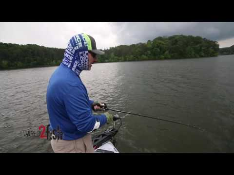 Catch Bass During the Post Spawn Transition