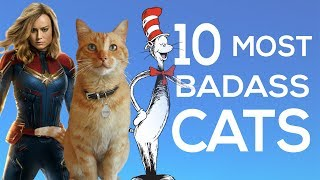 The 10 Most Badass Cats in the Universe