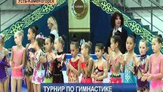 Международный турнир по гимнастике. ВКО