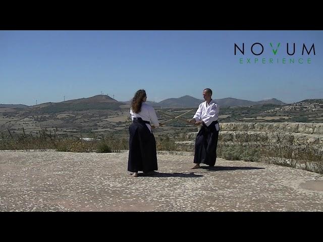 Go no Awase - Aikido Novum Experience - Ken no Awase - 合氣道 - 剣の合わせ - 五の合わせ