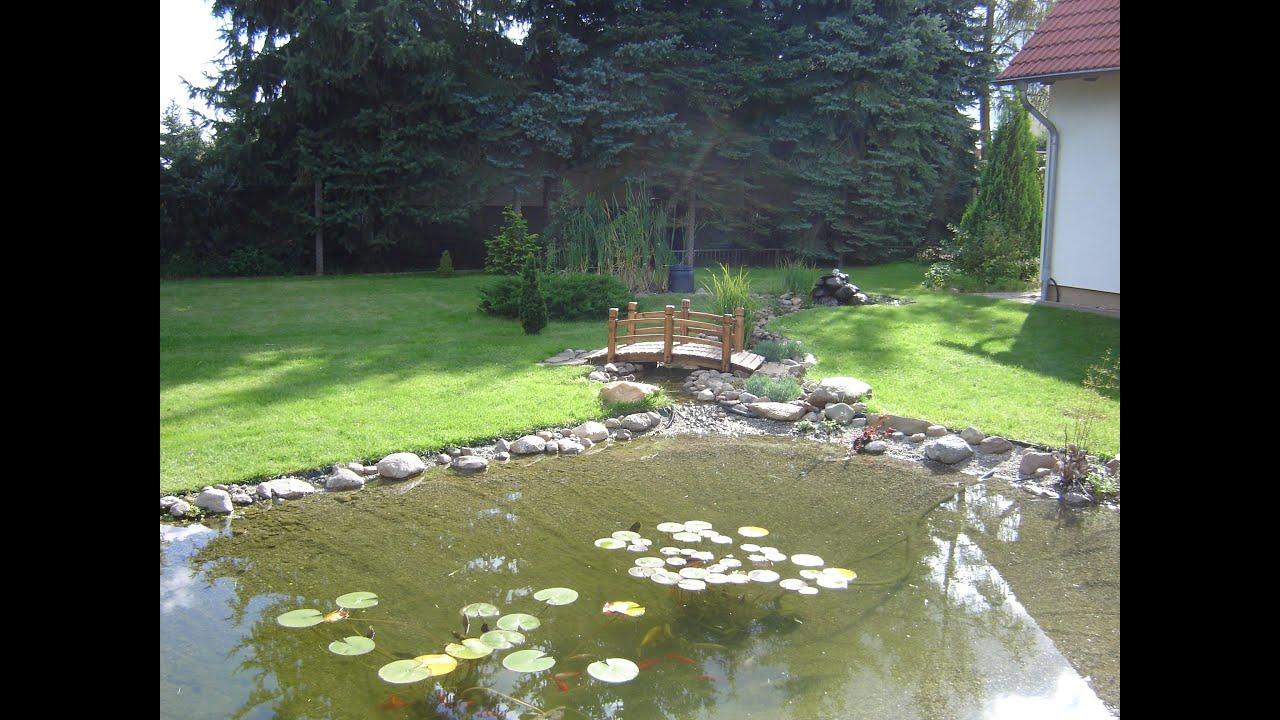 Etwas Neues genug Flacher Teich/Bachlauf mit Wasserfall, Fragen | Hobby-Gartenteich &SM_81