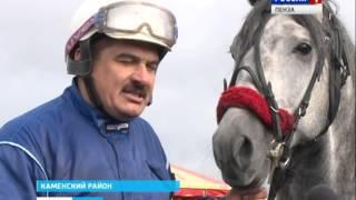 Фестиваль конного спорта в Завиваловке собрал более полусотни участников