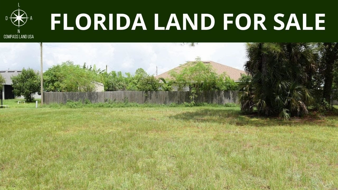 0.23 Acres - With Power and Paved Road Access! In Cape Coral, Lee County Florida