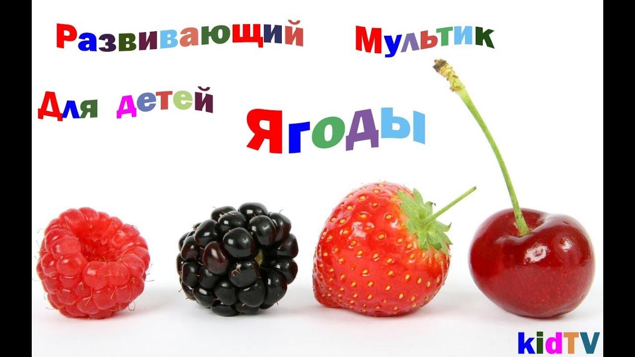 МультСериал Приключения Джеки Чана 1 сезон все серии