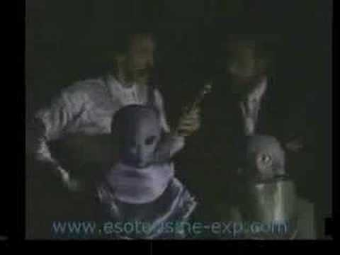 extraterrestre les gris