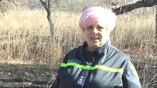 Запорізька область: рятувальники ліквідували 9 пожеж в екосистемах