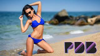 New Best Party Club Dance Music Megamix 2016   PDB
