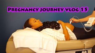 Pregnancy Journey Vlog #15:: Pray For Nugget!(Update)