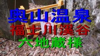 山梨 奥山温泉 福士川溪谷 六地蔵公園 前をイノシシが
