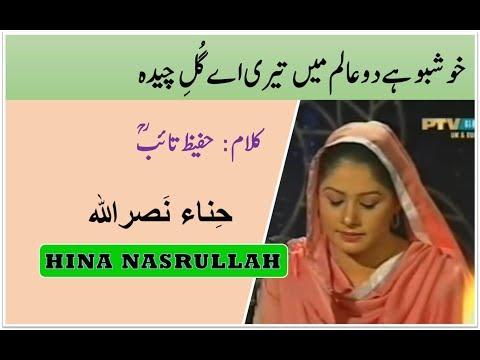 Khushboo Hai Do Aalam Main Teri || Hina Nasrullah || Hazrat Hafeez Taib (R.A)