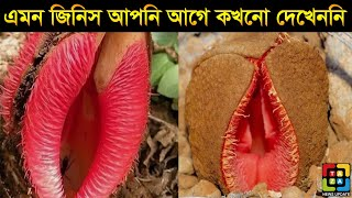 10 Things you will See first Time that will blow your mind in Bangla