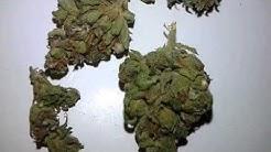 Medical Cannabis Dispensaries in Arizona Have $8 Grams