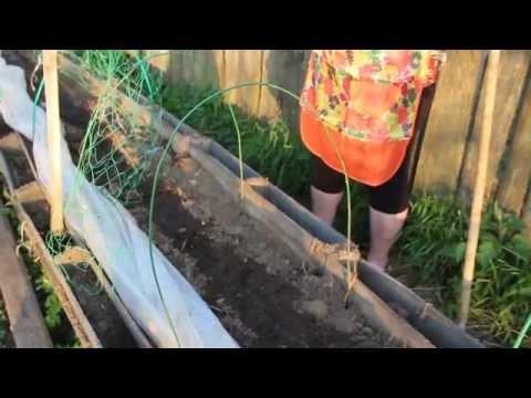 О пользе опилок - как влияют опилки на почву? Опилки как