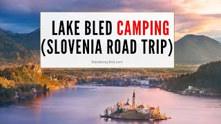 Camping at Lake Bled Campsite (with INCREDIBLE sunrise drone shots)