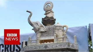 'Five baby elephants died to make this'   BBC News