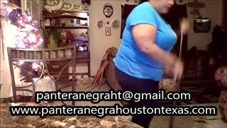 De La texas houston negra pantera