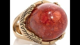 Studio Barse Gemstone Cabochon Bronze Dome Ring